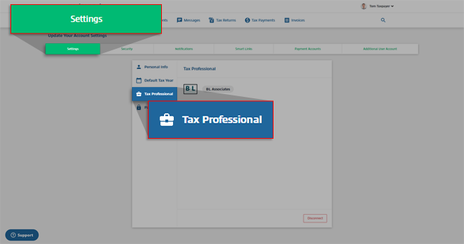 Settings_-_Tax_Professional.png
