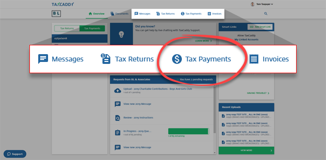 Overview_-_Navigation_menu_-_01_-_Tax_Payments.png